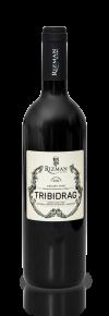 tribidrag-rizman